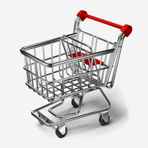Wie funktioniert das Bestellen über das Internet?