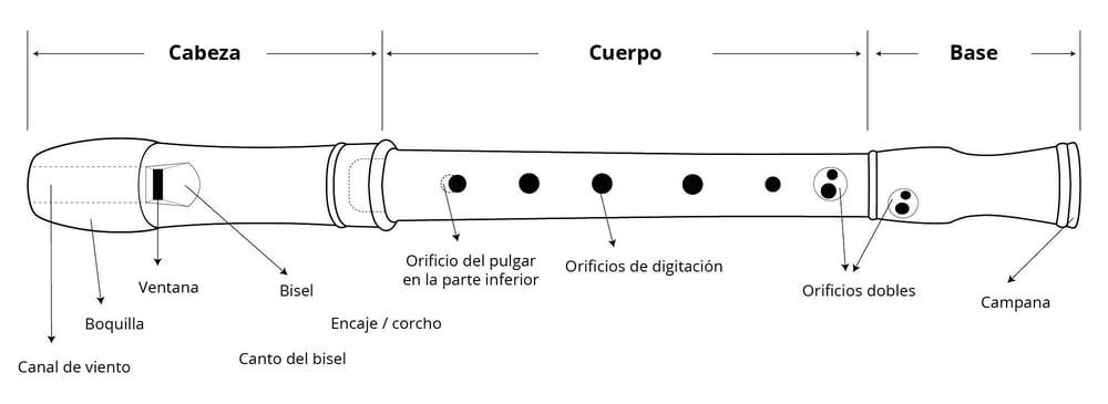 Thomann Consejero-Online Cuidados, mantenimiento y corrección de problemas La flauta dulce – Thomann España