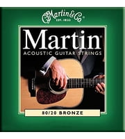 010 Acoustic Guitar Strings