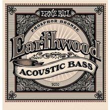 Ernie Ball 2070 Earthwood