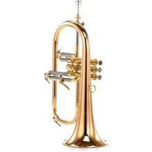 Carol Brass CFL-6200-GSS-Bb-L