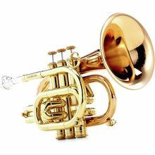 Carol Brass CPT-3000-GLS-Bb-L