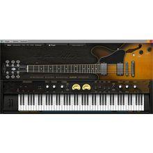 Ample Sound Ample Guitar Semi Hollow III