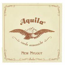 Aquila 38NNG New Nylgut Lute String