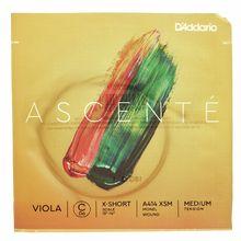 Daddario A414 XSM Ascente Viola C