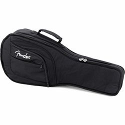 Other Fretted Instrument Cases & Bags