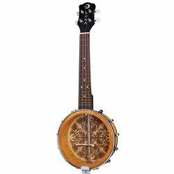 Banjo Hybrids