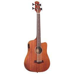 Acoustic & Semi-Acoustic Basses