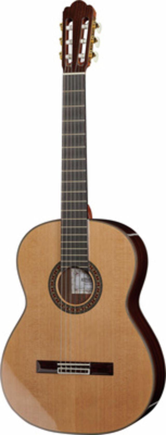 Asturias Standard Cedar
