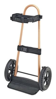 Salvi CR0001 Trolley for Harps Oz2zxDRic