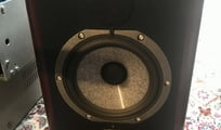 Focal Solo 6be (Paar) aktiv