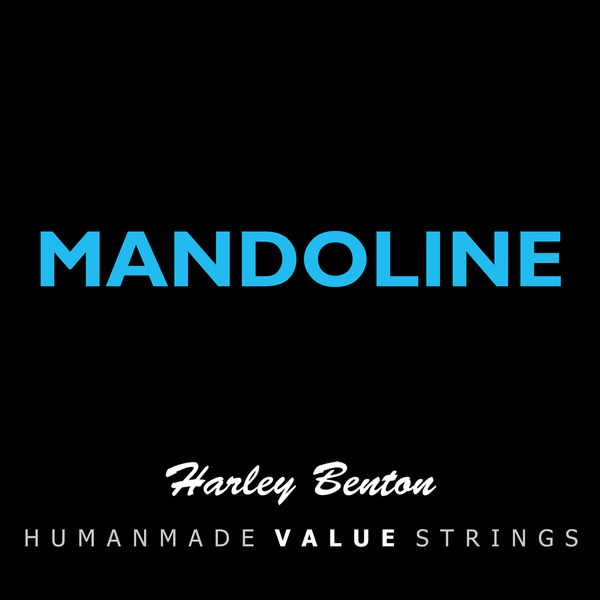 Harley Benton Valuestrings Man 10-34