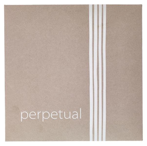 Pirastro Perpetual Cadenza Cello 4/4 C
