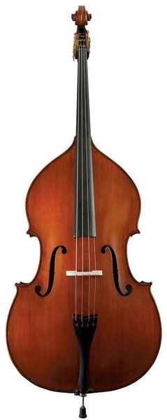 Gewa Premium Line Solid Top Bass
