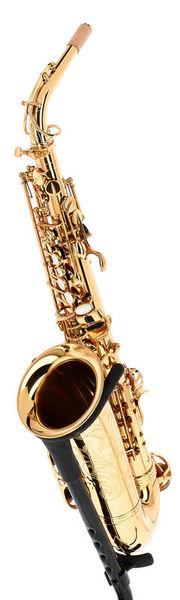 Forestone GX Gold Lacquered Alto Sax