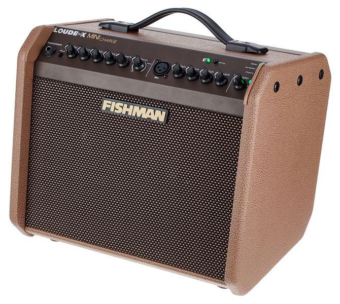 Fishman loudbox mini 13243866_800