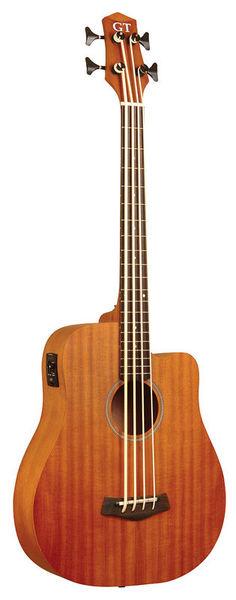 Gold Tone Micro Bass 25 w/Bag