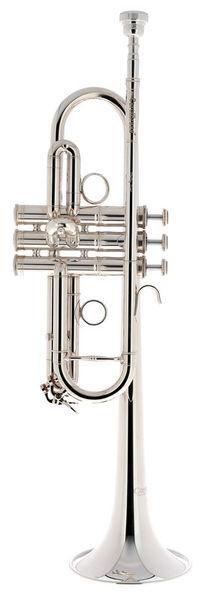 Carol Brass CTR-5060H-GSS-C-S