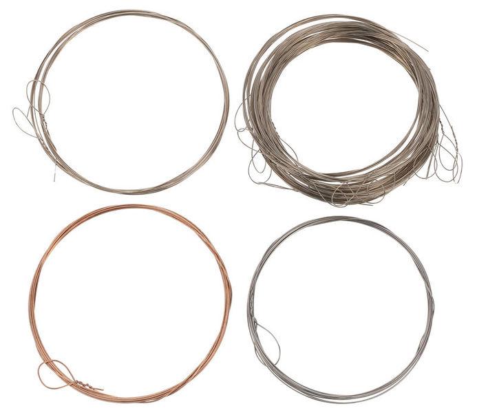 Thomann Nataraj Dilruba Strings Set