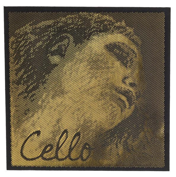 Pirastro Evah Pirazzi Gold Cello A Str.