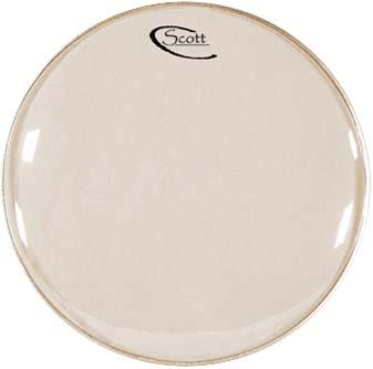 """Scott 10"""" Banjo Head White"""