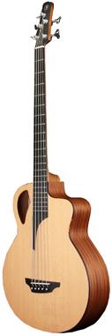 Furch Bc61-5 CM Acoustic Bass