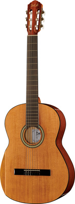 DEA Guitars Student Cedar 4/4 HG