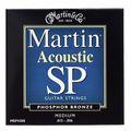 Martin Guitars MSP4200
