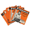 10. Pyramid E-9th Pedal Steel Set
