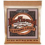 Ernie Ball 2153 Earthwood Phosphor Bronze