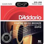 Daddario EXP12