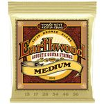 Ernie Ball 2002 Earthwood Bronze