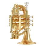 Kühnl & Hoyer Pocket G Bb-Trumpet