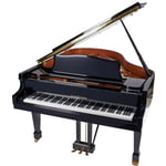 Roth & Junius RJGP 186 E/P Grand Piano