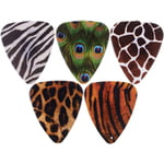 Grover Allman Animal Print Picks