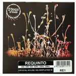 Dorazio RE1 Requinto Strings