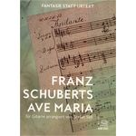 Acoustic Music Schuberts Ave Maria