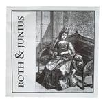 Roth & Junius Lever Harp String No. 24/34