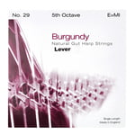 Bow Brand Burgundy 5th E Gut Str. No.29