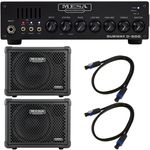 Mesa Boogie Subway D-800 Bundle 2