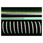 KapegoLED LED Flex Stripe Green 5m 12V