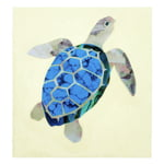 Jockomo Nature Sea Turtle Sticker