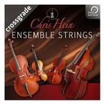 Best Service Chris Hein Ensemble Strings CG