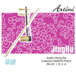 Thomann Chinese JingHu Strings Set