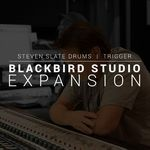 Slate Digital SSD5 Exp Blackbird Studio Drum