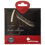 Galli Strings Lever Harp Bass Wire B28