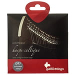 Galli Strings Lever Harp Bass Wire D33