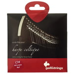 Galli Strings Lever Harp Bass Wire C34
