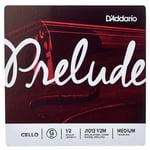 Daddario J1013 1/2M Prelude Cello G