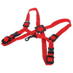 BG S429SH Strap Children